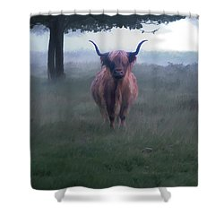 11. Highland Shower Curtain