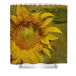 Sunflower Shower Curtain by Cindi Ressler