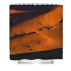 120118p071 Shower Curtain by Arterra Picture Library