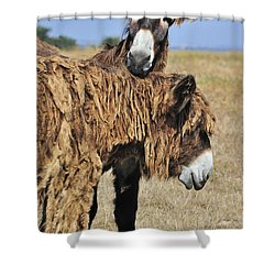 Shower Curtain featuring the photograph 120920p028 by Arterra Picture Library