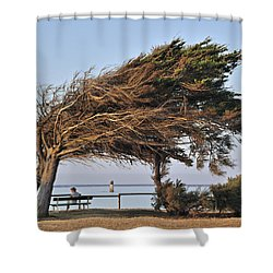 Shower Curtain featuring the photograph 120920p152 by Arterra Picture Library