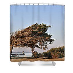 Shower Curtain featuring the photograph 120920p153 by Arterra Picture Library