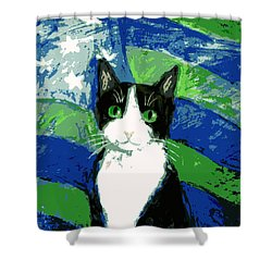 Cat With Stars And Stripes Shower Curtain