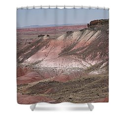 Painted Desert Shower Curtain by Frank Romeo