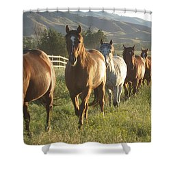 130 Friends Shower Curtain