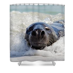 Shower Curtain featuring the photograph 130201p142 by Arterra Picture Library