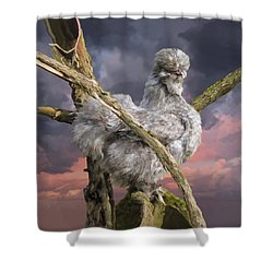 14. Cuckoo Bush Shower Curtain