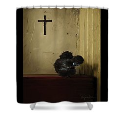16. Black Silkie Shower Curtain