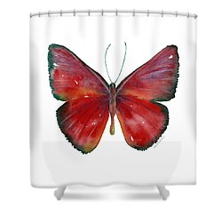 16 Mesene Rubella Butterfly Shower Curtain