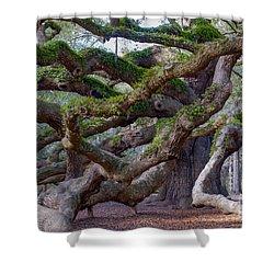 Angel Oak Tree Unique View Shower Curtain