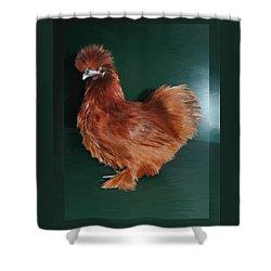 19. Red Silkie Hen Shower Curtain