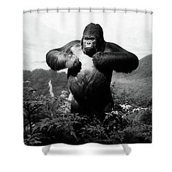1940s Stuffed Gorilla Gorilla Gorilla Shower Curtain