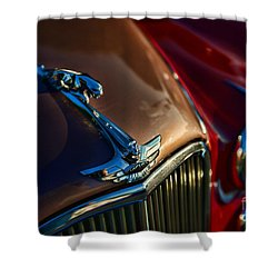 1953 Jaguar Mk7 Shower Curtain by Paul Ward