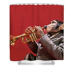1960s Chimpanzee Wearing Sport Jacket Shower Curtain