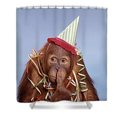 1960s Orangutan Pongo Pygmaeus Finger Shower Curtain