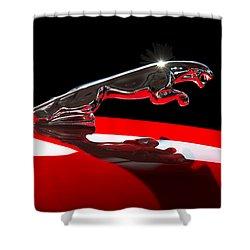 1961 Jaguar Kougar Hood Ornament -0569c Shower Curtain