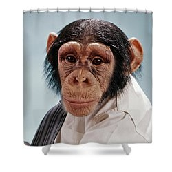1970s Close-up Face Chimpanzee Looking Shower Curtain
