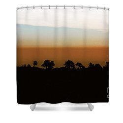 Shower Curtain featuring the photograph 1974 by Dana DiPasquale