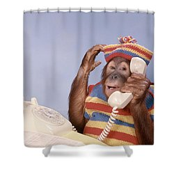 1980s Orangutan Pongo Pygmaeus Shower Curtain