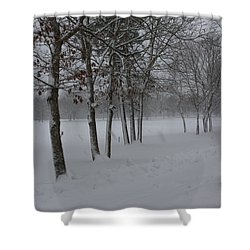 Shower Curtain featuring the photograph 2 2014 Winter Of The Snow by Paul SEQUENCE Ferguson             sequence dot net