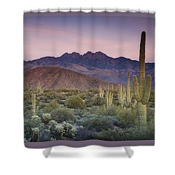 A Desert Sunset  Shower Curtain by Saija  Lehtonen