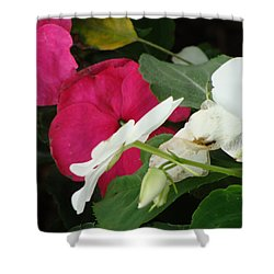 A Quiet Place Shower Curtain by Ira Shander