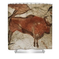 Altamira Cave Paintings Shower Curtain by Photo Researchers