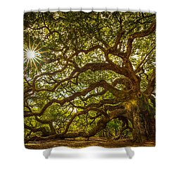 Shower Curtain featuring the photograph Angel Oak by Serge Skiba