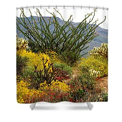 Arizona Springtime Shower Curtain