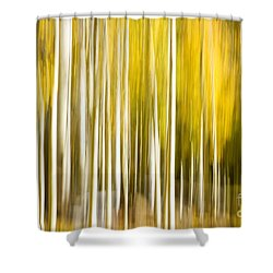 Aspen Glow Shower Curtain by Bryan Keil