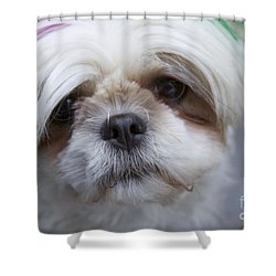 Shower Curtain featuring the photograph Atsuko by Xn Tyler