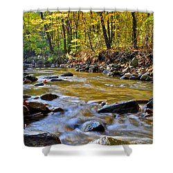 Autumn Stream Shower Curtain by Frozen in Time Fine Art Photography