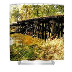Autumn Travels Shower Curtain