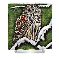 Shower Curtain featuring the painting Barred Owl by VLee Watson