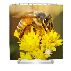 Bee On A Yellow Flower Shower Curtain