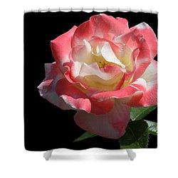 Shower Curtain featuring the photograph Bicolordette by Doug Norkum
