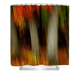 Blazing In The Woods Shower Curtain by Randy Pollard