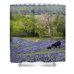 Bluebonnets On The Farm Shower Curtain by David and Carol Kelly
