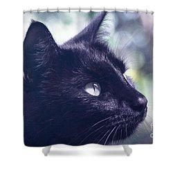 Boki Shower Curtain by Sharon Mau