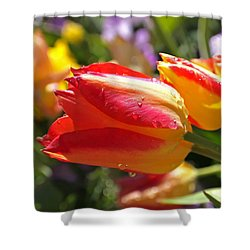 Bowing Tulips Shower Curtain by Rona Black