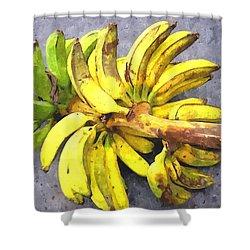 Bunch Of Banana Shower Curtain by Lanjee Chee