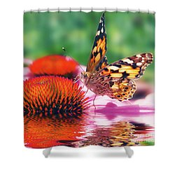 Butterfly Shower Curtain by Angela Doelling AD DESIGN Photo and PhotoArt
