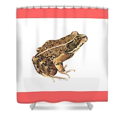 California Red-legged Frog Shower Curtain by Cindy Hitchcock