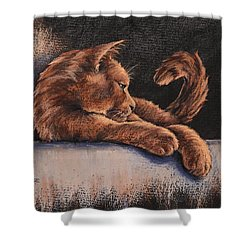 Shower Curtain featuring the painting Catching The Last Rays by Cynthia House
