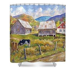 Charlevoix North Shower Curtain by Richard T Pranke