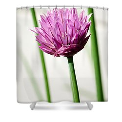 Chives Shower Curtain by Jouko Lehto