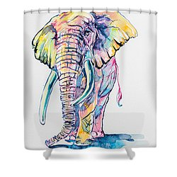 Colorful Elephant Shower Curtain by Kovacs Anna Brigitta