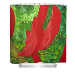 Coral Bean Tree Shower Curtain by Mark Robbins