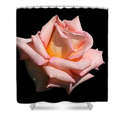 Shower Curtain featuring the photograph Coralie by Doug Norkum