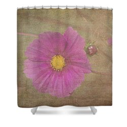 Shower Curtain featuring the photograph Cosmos by Arlene Carmel